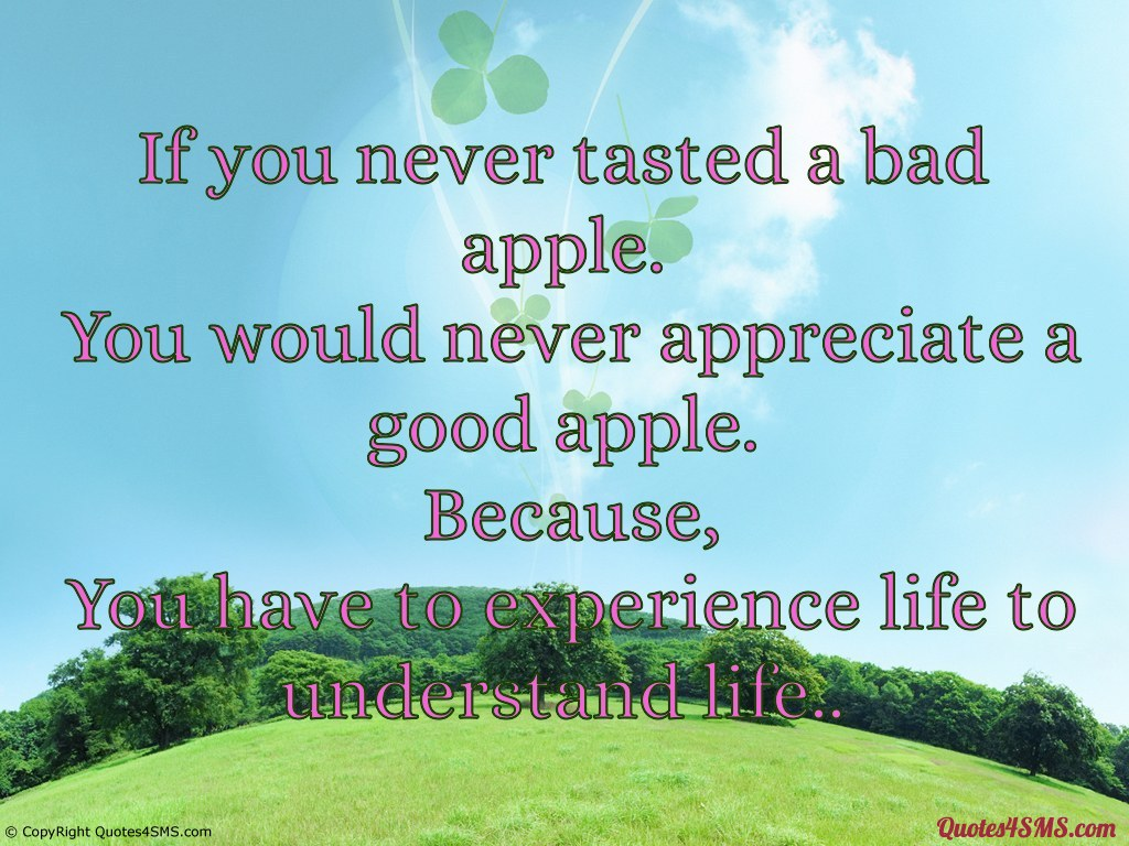 Quote Related To Life 60 Best Quotes & Sayings About Experience