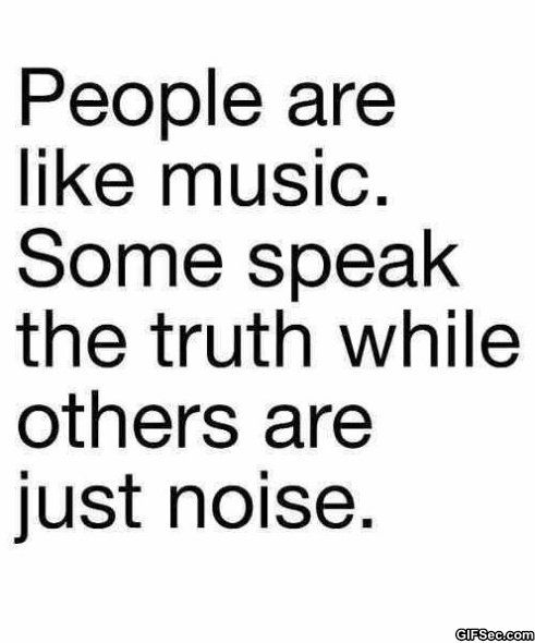 People are like music some speak the truth and others are just noise