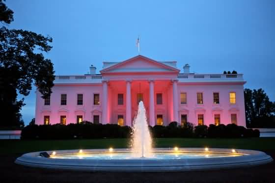 illuminated house lights pink lights illuminated on the north portico exterior of the white