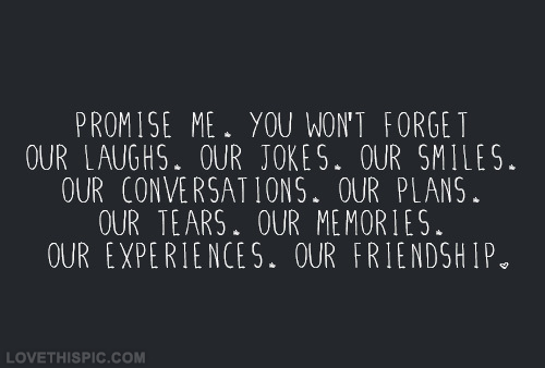 Promise me, you won't forget our laughs, our jokes, our smiles, our conversations, our plans, our tears, our memories, our experiences, our friendship