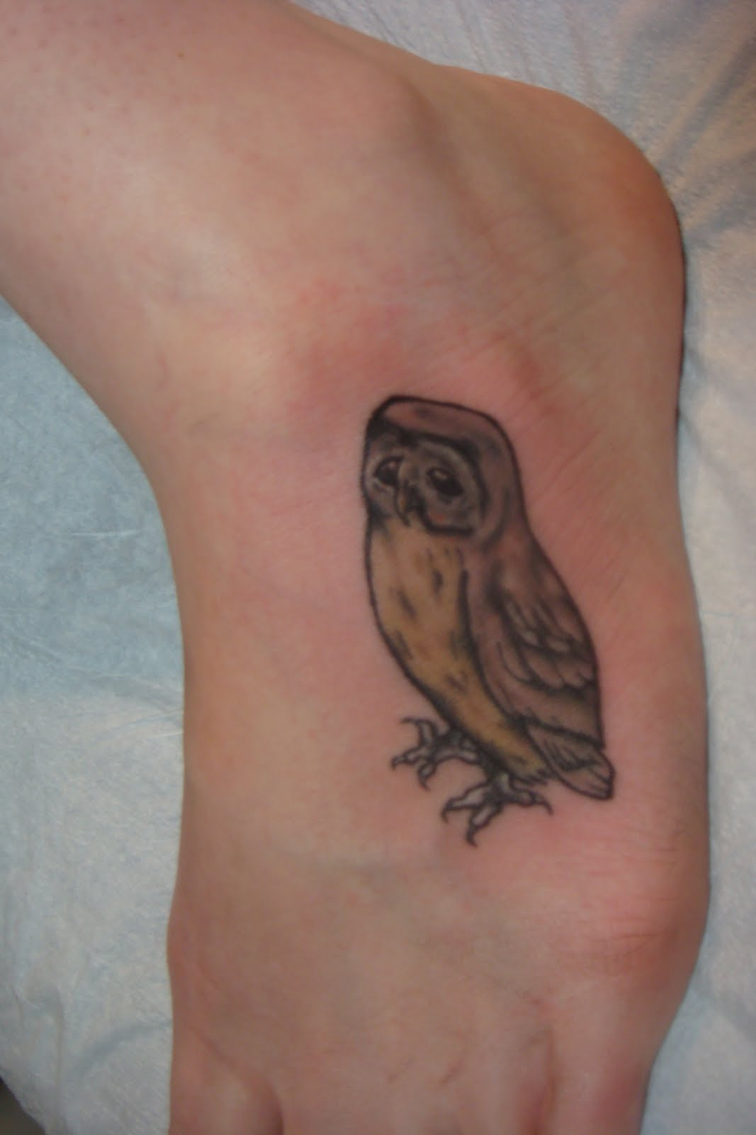 Cute owl tattoos on foot - photo#23