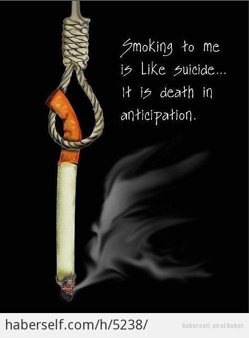 Anti Smoking Quotes Extraordinary 48 Best Smoking Quotes Sayings
