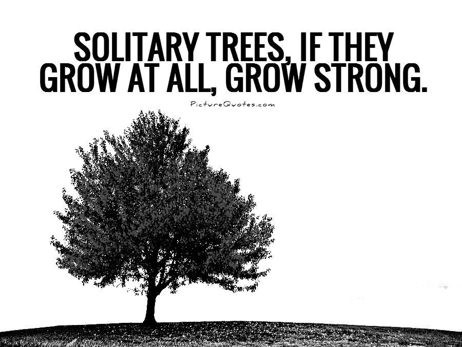 60 Best Tree Quotes & Sayings