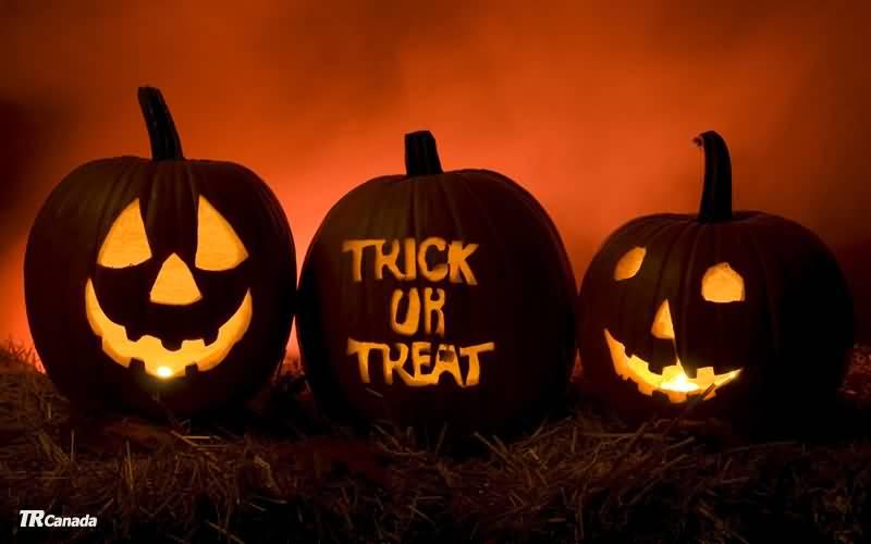 Trick Or Treat Written On Pumpkin Happy Halloween