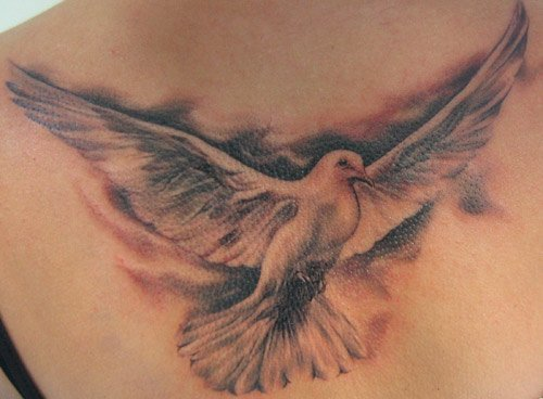 35 realistic dove tattoos ideas. Black Bedroom Furniture Sets. Home Design Ideas