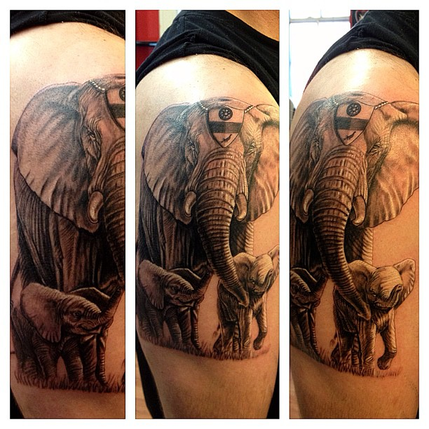 3D Elephant Family Tattoo On Right Shoulder