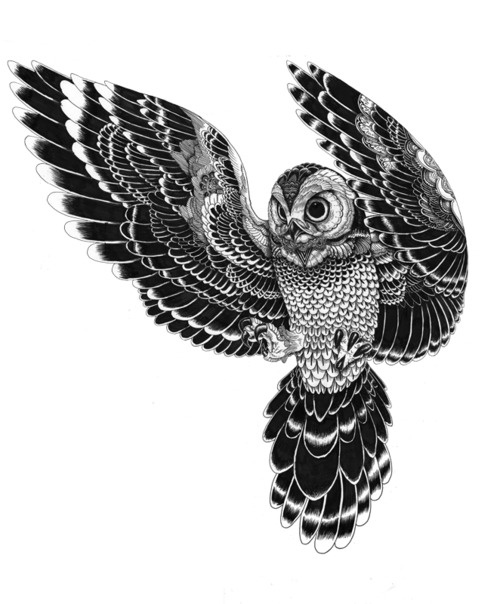28 flying owl tattoo designs rh askideas com flying owl tattoo drawing flying owl tattoo stencil