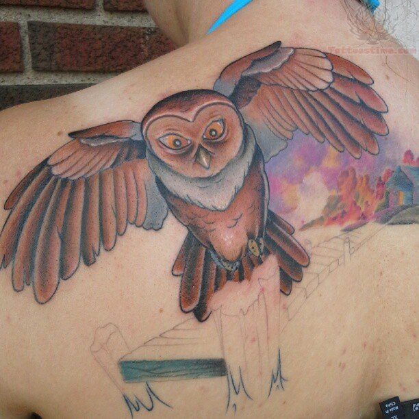 Flying Owl Shoulder Tattoos