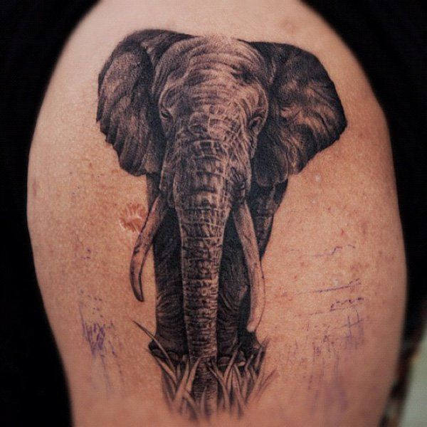 4747dfcd309a8 Black Ink Asian Elephant Tattoo On Right Front Chest