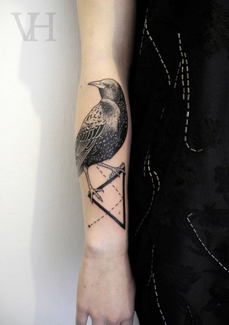 Black Ink Bird On Triangle Tattoo Right Forearm