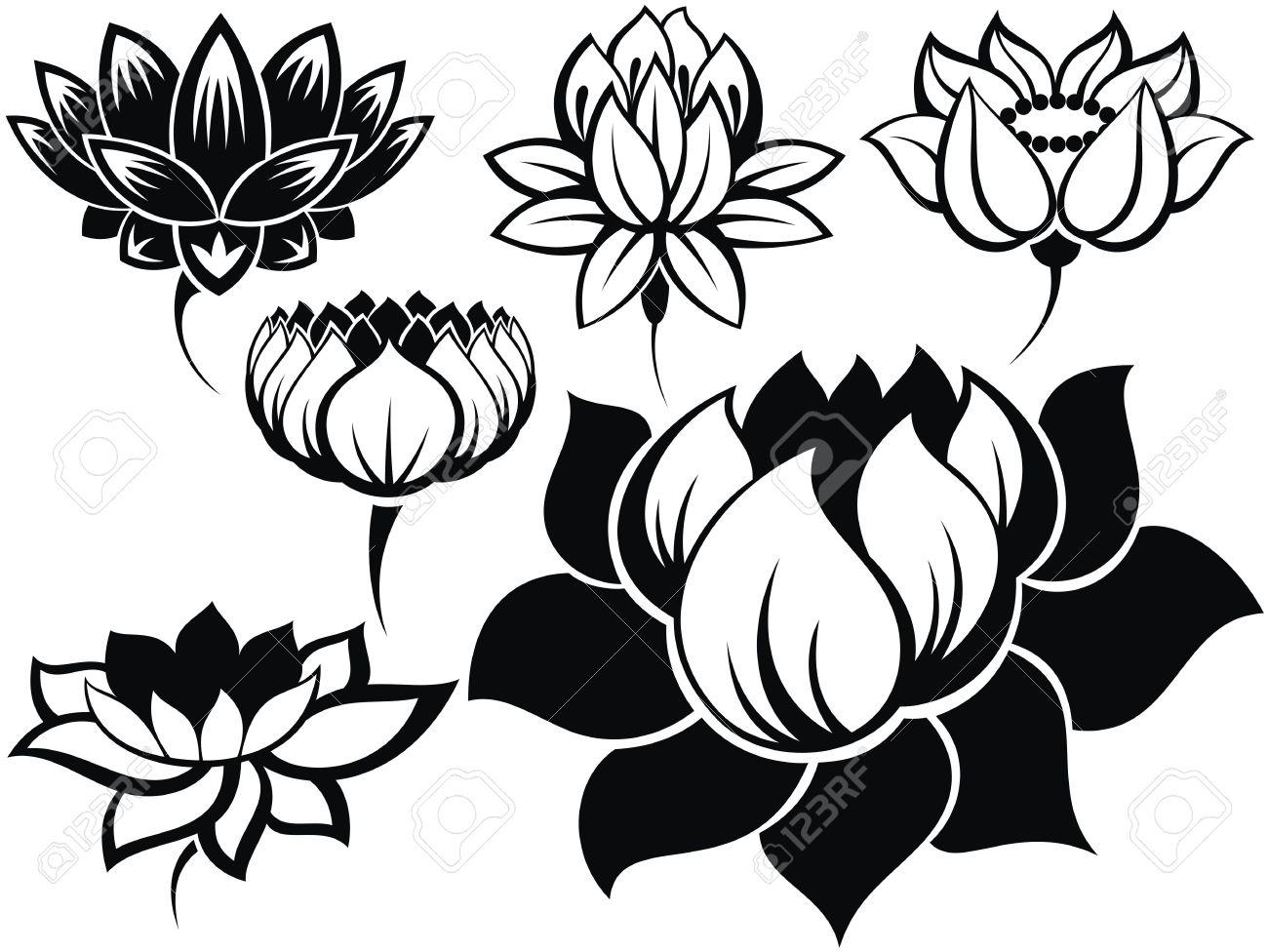 Lotus Flower Tattoo Flash Images For Tatouage