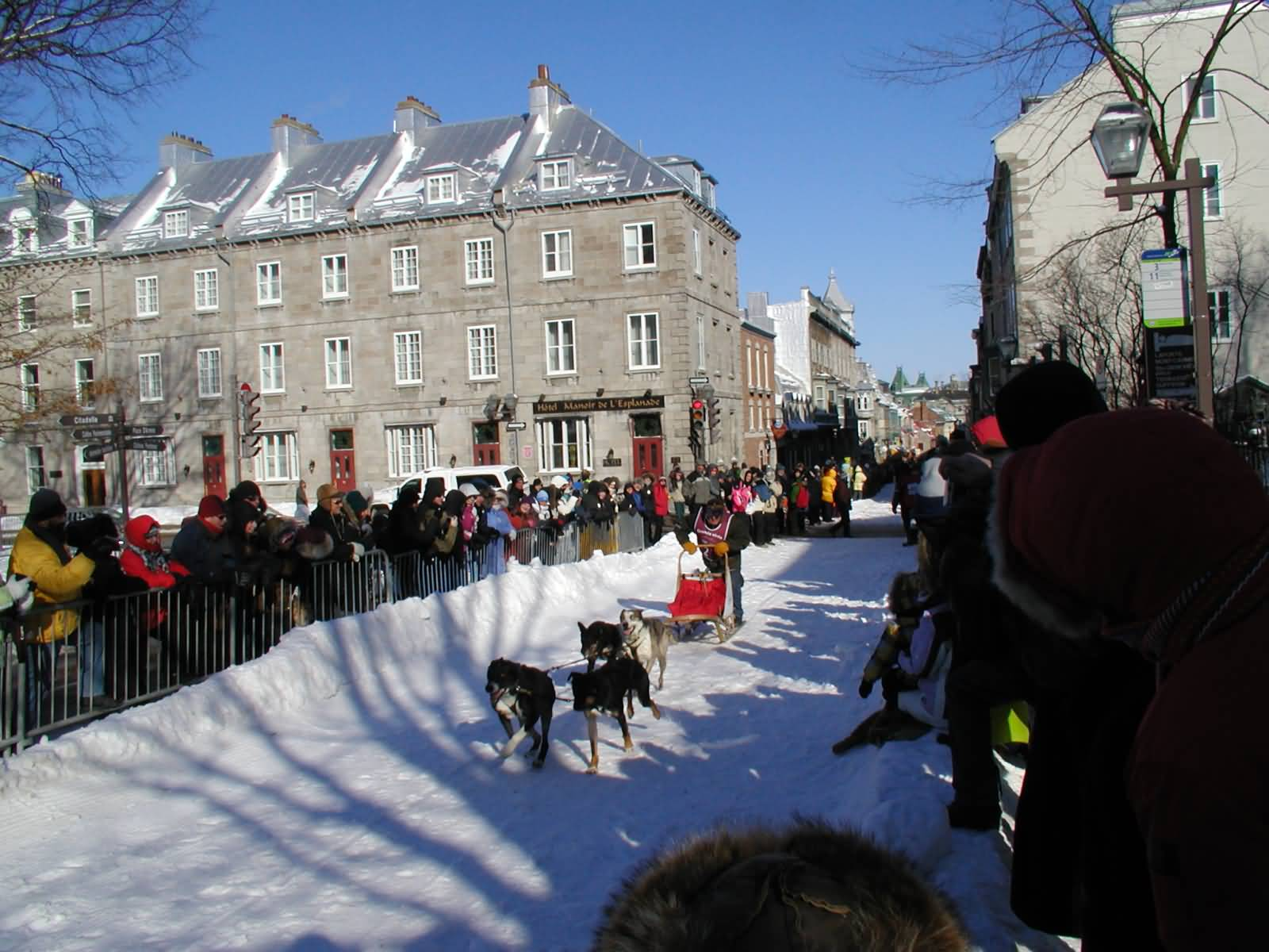 an essay on the quebec winter carnival Winter carnival essays and research papers winter essay now embracing winter warmly winter is a weather reality for most of us who live in north america.