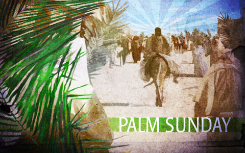 Happy Palm Sunday Greetings Picture
