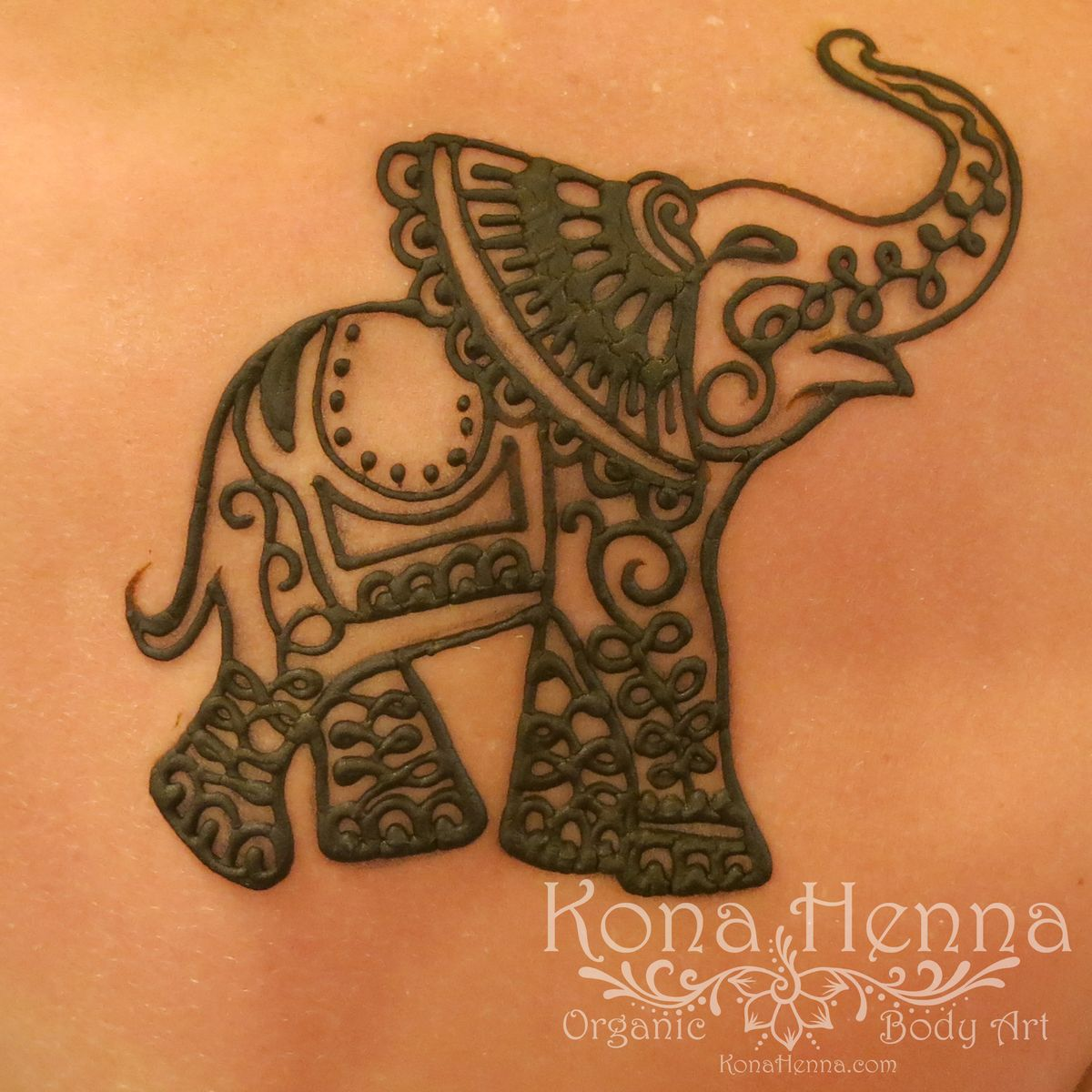 Mehndi Elephant Head : Henna elephant tattoos