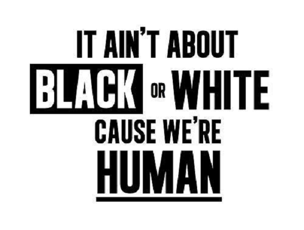 Racist Quotes Gorgeous 48 Best Racism Quotes And Sayings