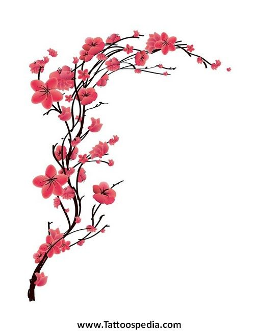 55 Latest Cherry Blossom Tattoos Ideas