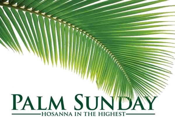 Palm Sunday Hosanna In The Highest Wishes Picture