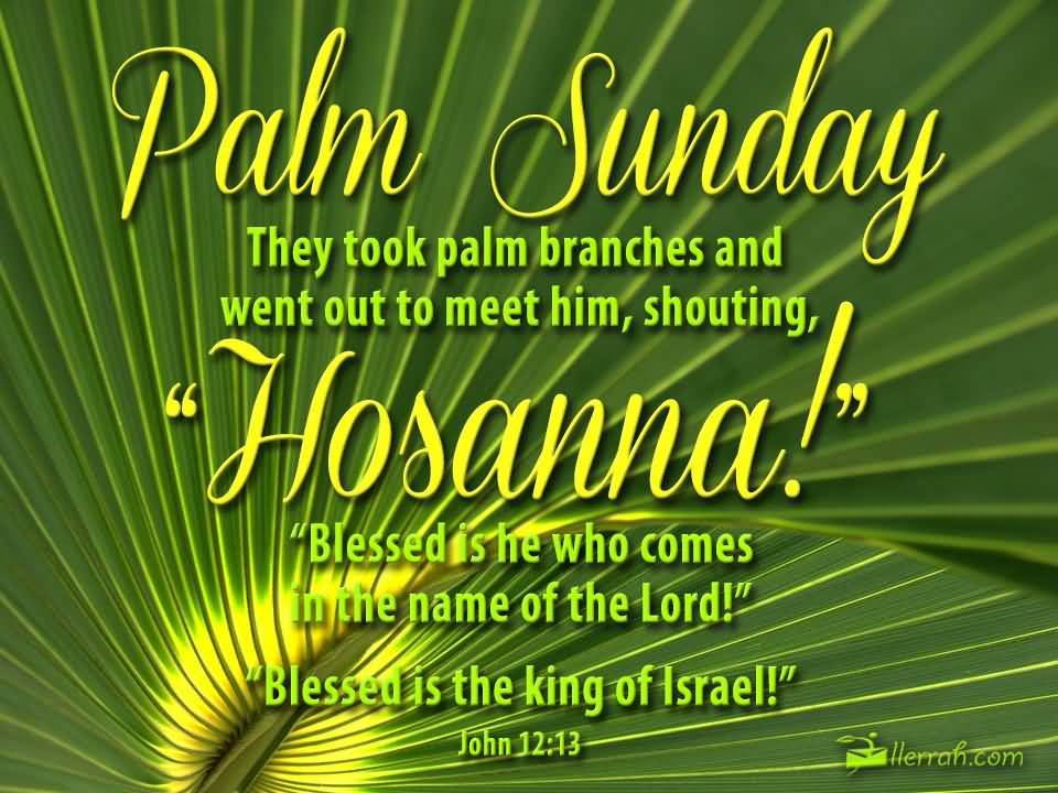 Palm Sunday They Took Palm Branches And Went Out To Meet Him, Shouting Hosanna