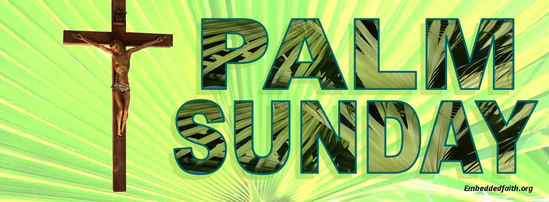 Palm Sunday Wishes Facebook Cover Picture