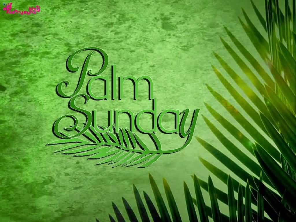 Palm Sunday Wishes For You