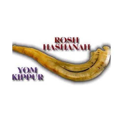 Rosh hashana and yom kippur we homework academic writing service rosh hashana and yom kippur we m4hsunfo
