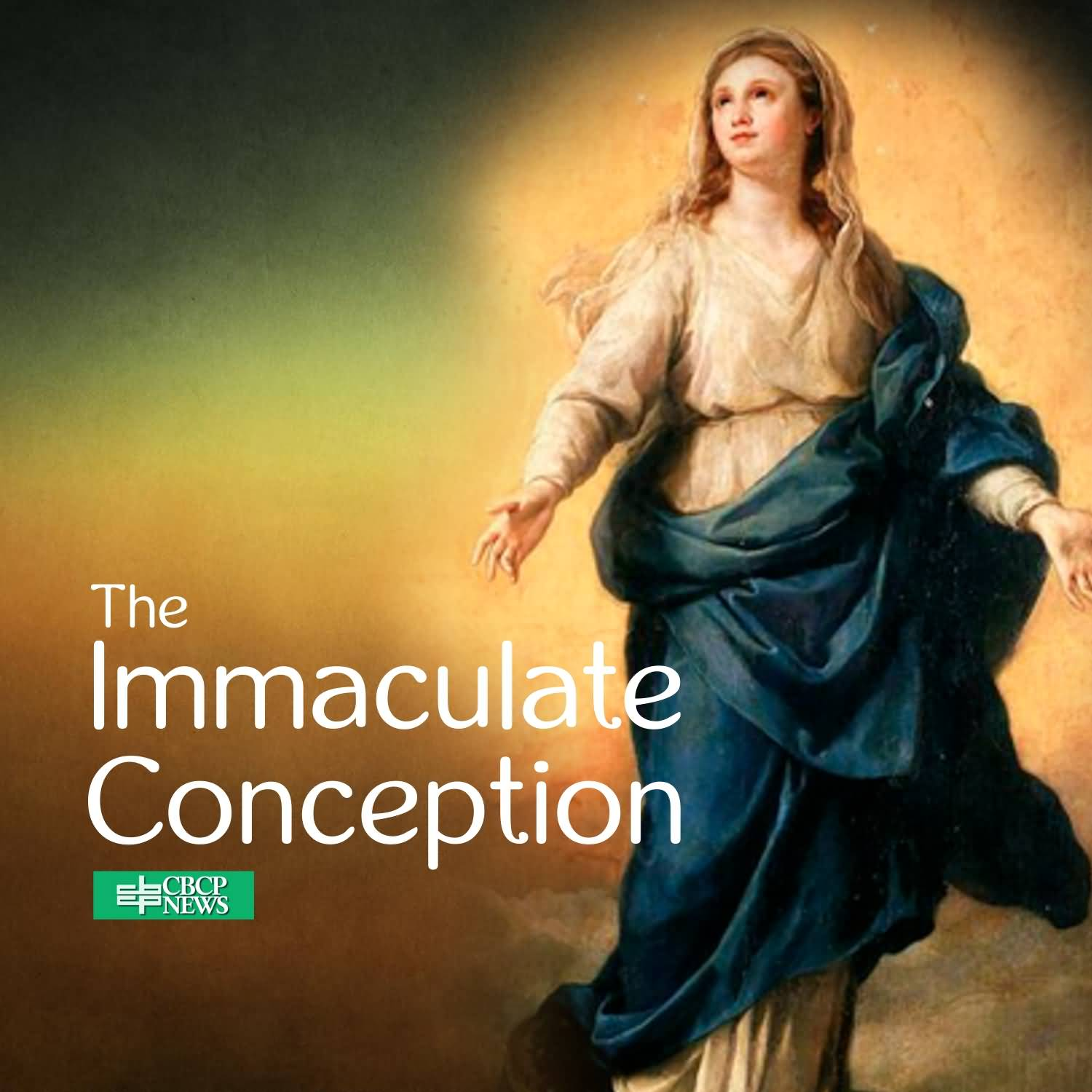 35 Immaculate Conception Day Pictures And Photos