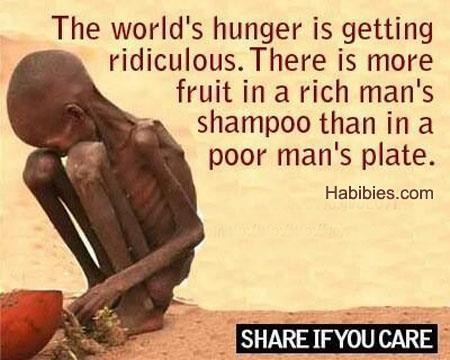 Quotes About Hunger Simple 60 Best Hunger Quotes And Sayings