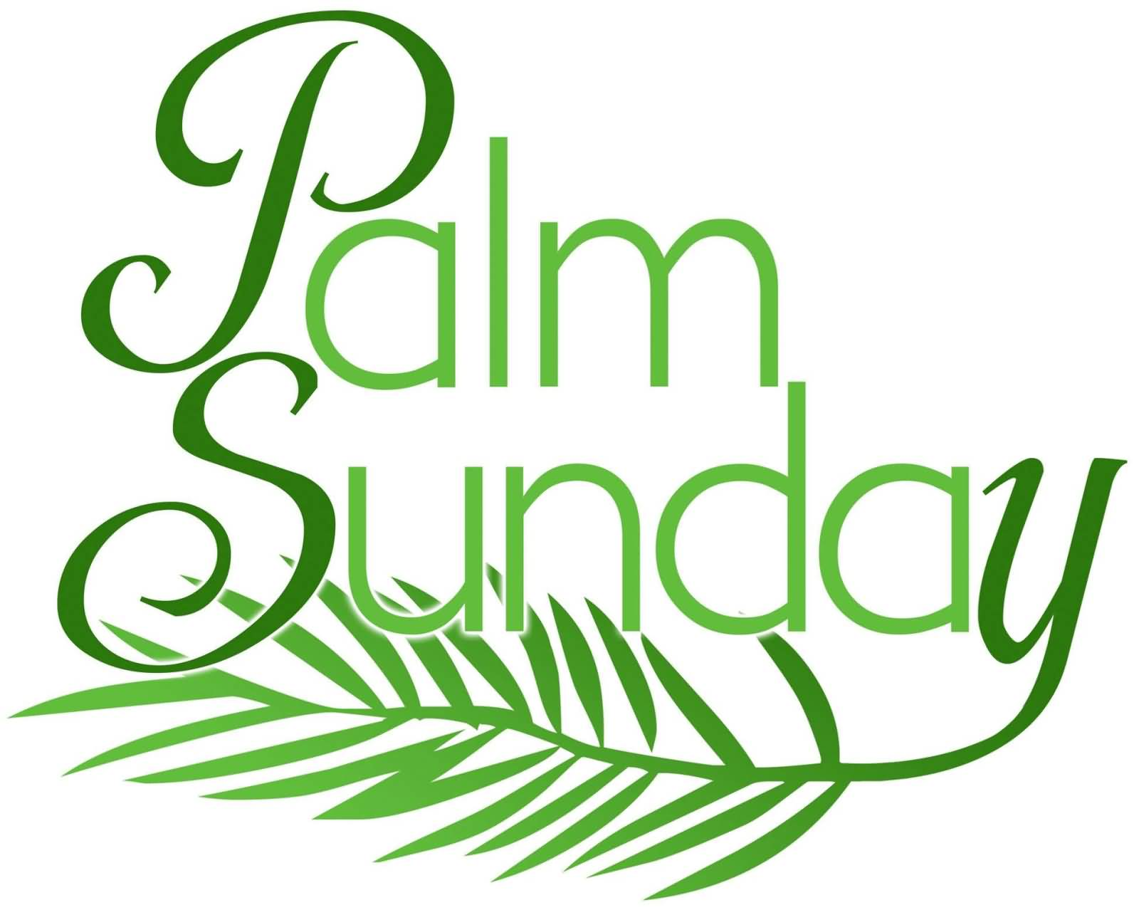 Wish You Happy Palm Sunday