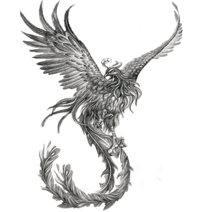e9c197bcc Amazing Black And Grey Flying Phoenix Tattoo Design