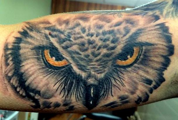 45 Wonderful Owl Face Tattoos