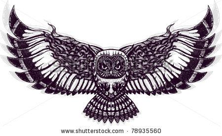 owl art | Owl tattoo design, Owls drawing, Owl tattoo