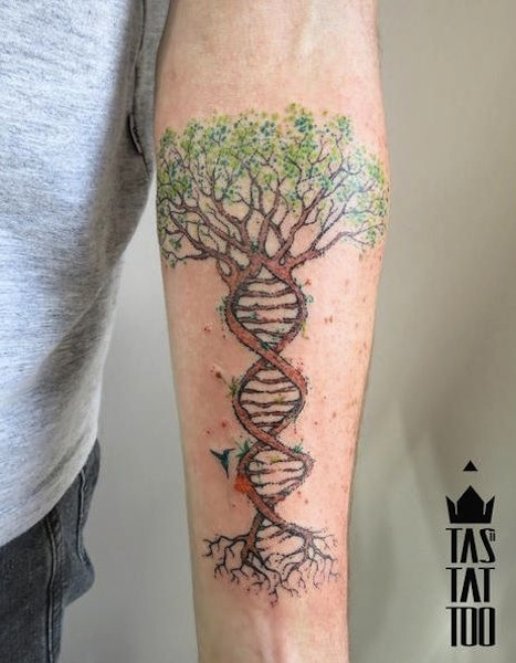 35 Tree Of Life Tattoos On Forearm