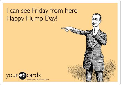 Image result for hump day