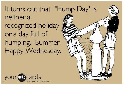 It Turns Out That Hump Day Is Neither A Recognized Holiday Or A Day Full Of