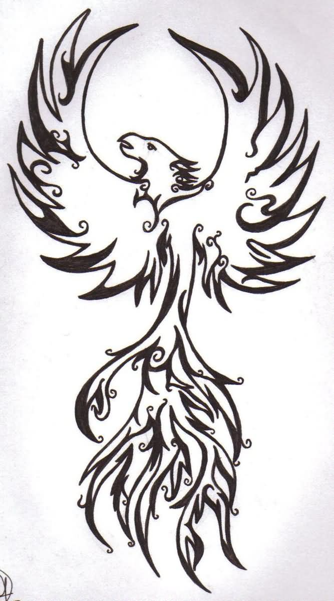 Colorful phoenix tattoo designs - Latest Black Outline Tribal Phoenix Tattoo Stencil By Sarah
