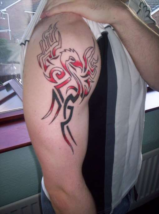 48+ Tribal Phoenix Tattoos Ideas