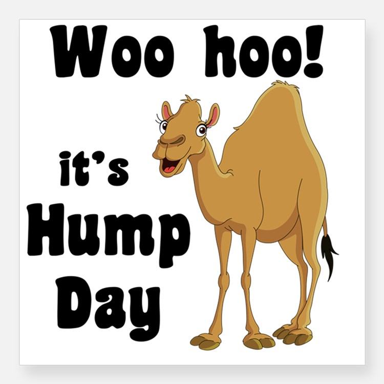 Woo Hoo Itu0027s Hump Day Picture