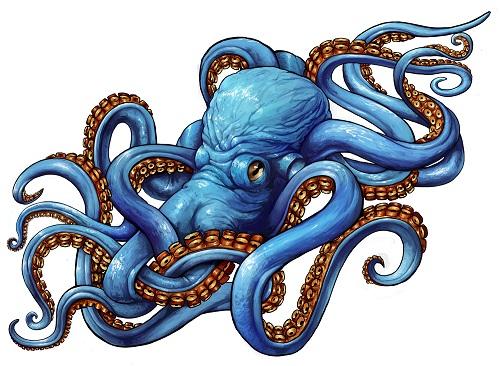 attractive octopus tattoo design for leg. Black Bedroom Furniture Sets. Home Design Ideas