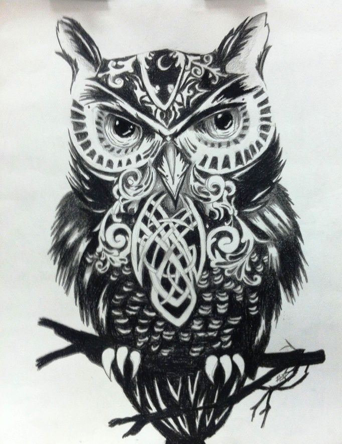 16 Black Owl Tattoos Designs And Ideas