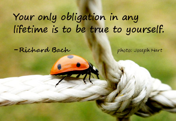 Be true to yourself Your only obligation in any lifetime is to be true to yourself. Richard Bach