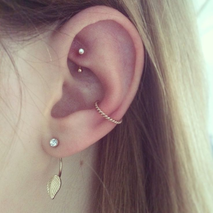 Read Complete 13+ Conch And Rook Piercing Pictures And Ideas