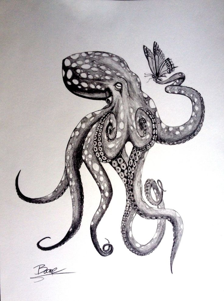Black And Grey Octopus With Butterfly Tattoo Design