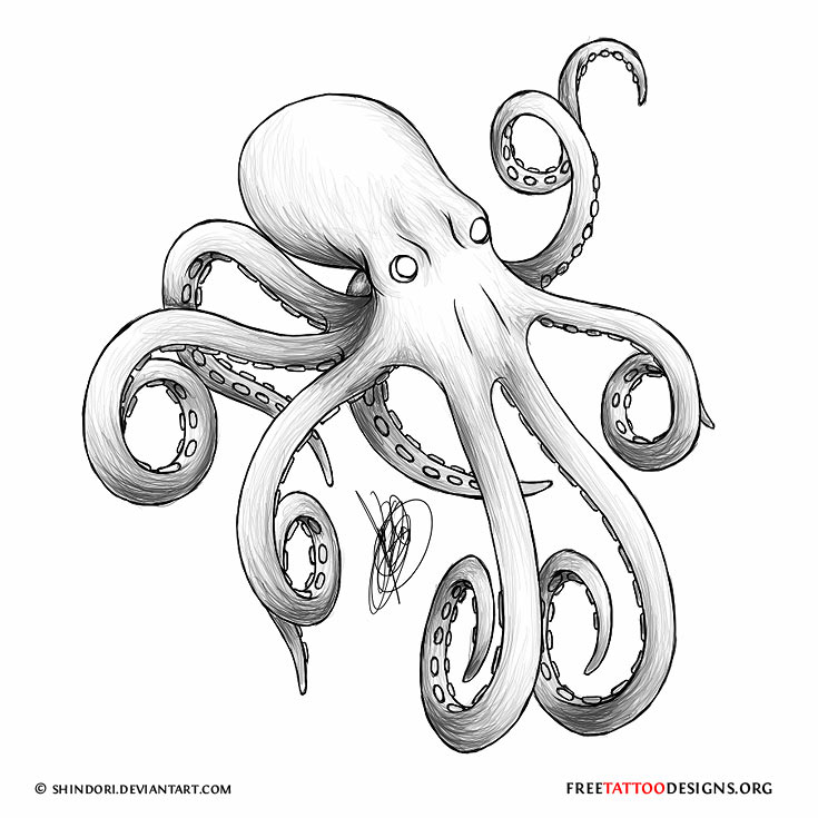 7c6921a6d Cool Grey Ink Octopus Tattoo Design By Juan Sebastian