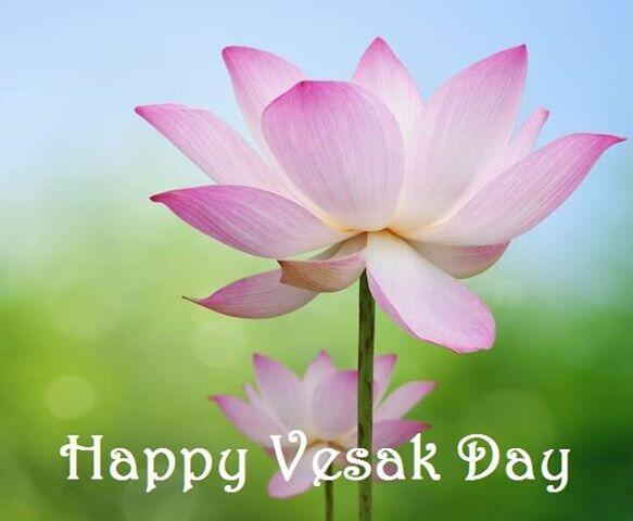 23 Happy Vesak 2017 Wish Pictures