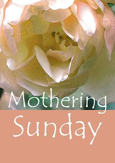 50 happy mothering sunday wish pictures mothering sunday rose flower greeting card m4hsunfo