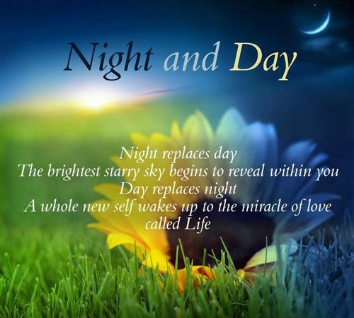 Famous Night Quotes: 61 Best Day Quotes And Sayings