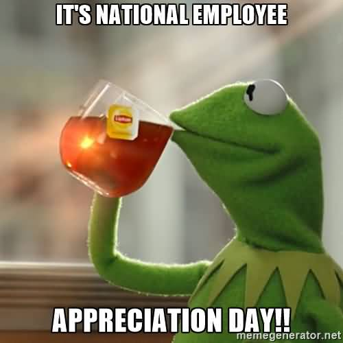 Its National Employee Appreciation Day Kermit The Frog Drinking Tea 55 most amazing employee appreciation day wishes images and photos