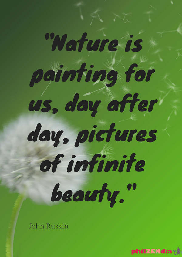 60 Beautiful Earth Quotes And Sayings Mesmerizing Quotes On Beauty