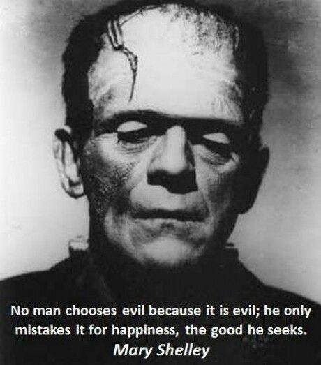 Frankenstein Creature Quotes: 62 Top Evil Quotes And Sayings