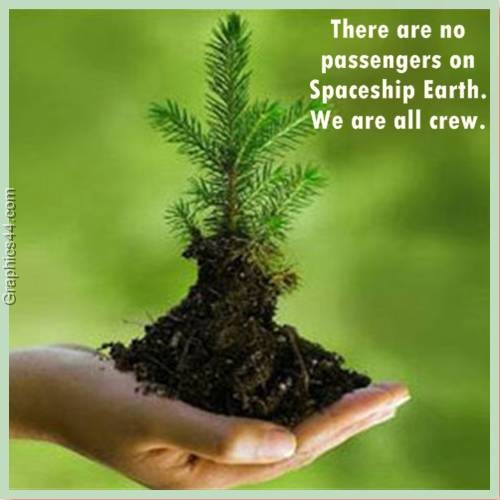 Protect Nature Quotes: 60 Beautiful Earth Quotes And Sayings